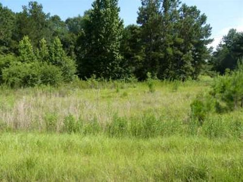 1.9 Acres Cedar Lane/Dixie Springs : Summit : Pike County : Mississippi