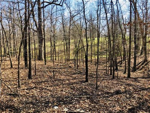 Wooded Country Building Site OR Re : Wirth : Sharp County : Arkansas