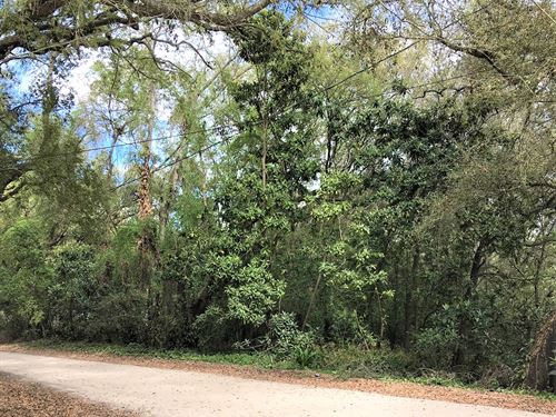 Mobile Home Lot For Cheap : Dade City : Pasco County : Florida