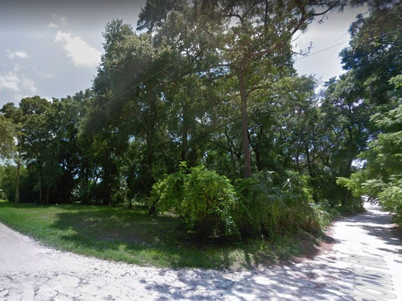 Big Mobile Home Lot - Can Subdivide : New Port Richey : Pasco County : Florida