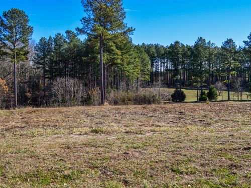 1+/- Acre Residential Lots : Spartanburg : South Carolina