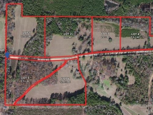 12.4 Acres In Webster County Lot : Cumberland : Webster County : Mississippi