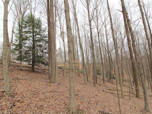 Sullivan Rd - 16 Acres : Sugar Grove : Fairfield County : Ohio