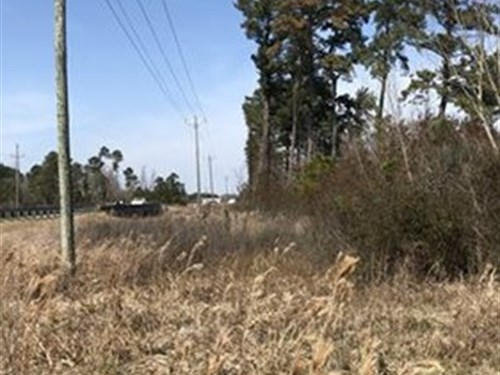Beaufort Co Lot For Sale, Belhaven : Belhaven : Beaufort County : North Carolina
