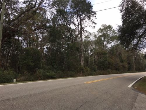 4 Acre Wooded Lot Zoned Residential : Tallahassee : Leon County : Florida