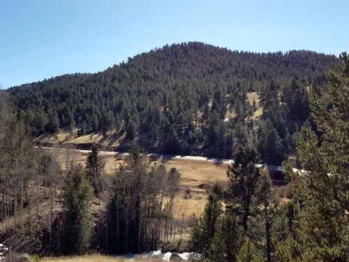 Great Campsite With Stream : Cripple Creek : Teller County : Colorado