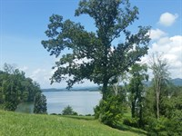 Cherokee Lakefront Lot With Dock : Russellville : Hamblen County : Tennessee