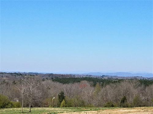Windy Hill Tract : Seneca : Oconee County : South Carolina