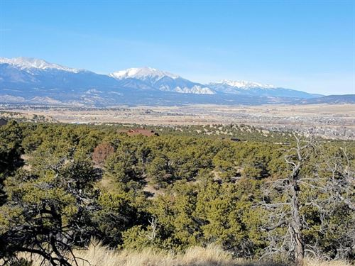 9902040, Gorgeous Mountain Propert : Salida : Chaffee County : Colorado