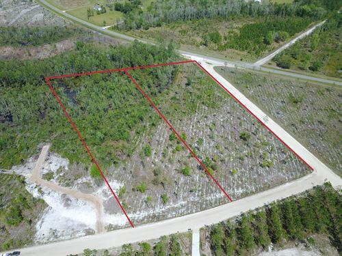 5 Acres- Jane Lane : Hilliard : Nassau County : Florida