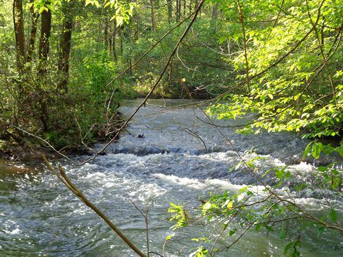 Beautiful Coheelee Creek Tract : Blakely : Early County : Georgia