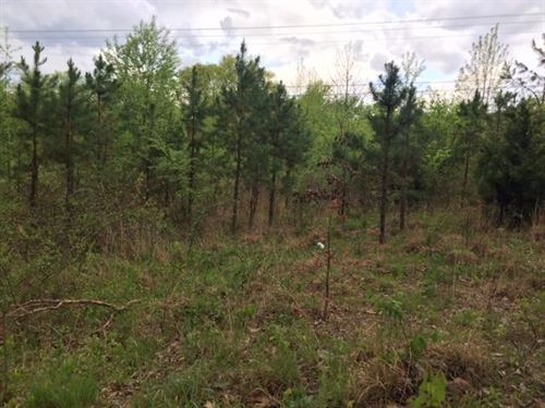 1.6+/-Acres Unrestricted : South Pittsburg : Marion County : Tennessee