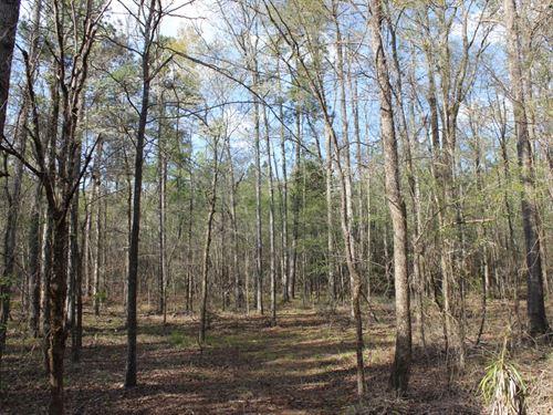Small Base Camp In A Qdm County : Sparta : Hancock County : Georgia
