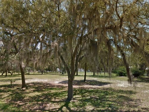 Citrus County, Fl $22,000 Neg : Hernando : Citrus County : Florida