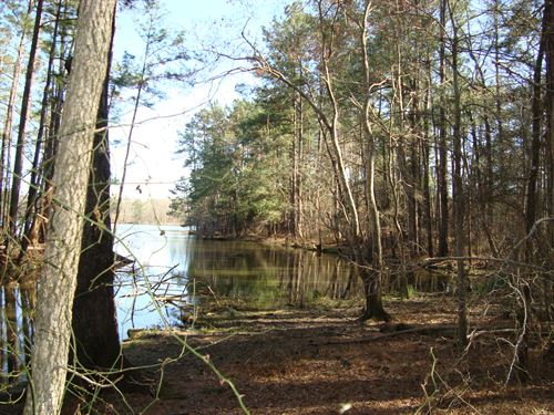 15 Acres - Fairfield County, Sc : Winnsboro : Fairfield County : South Carolina