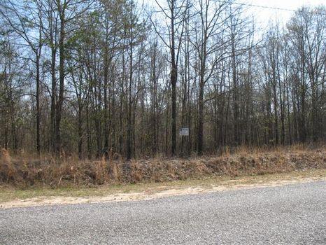 Seagler Road Lot : Roberta : Crawford County : Georgia