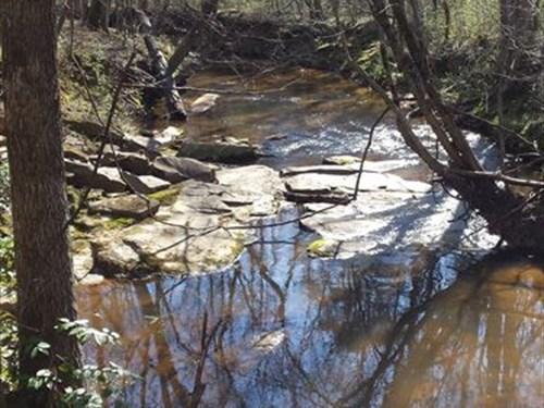 18.96 Acres - Fairfield County, Sc : Ridgeway : Fairfield County : South Carolina