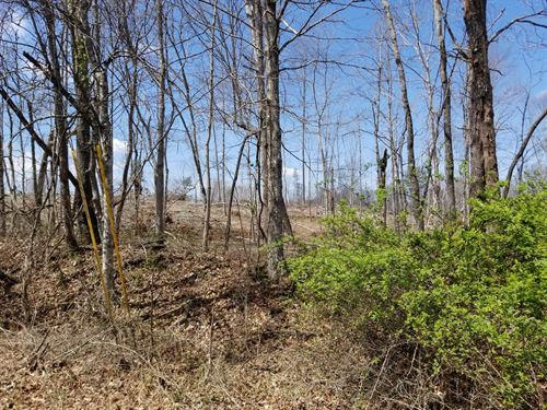 5.00+/-Acres Unrestricted : Tracy City : Grundy County : Tennessee