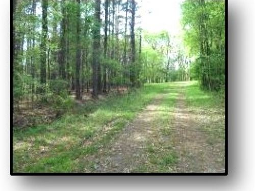 9.73 Acres In Madison County : Madison : Mississippi