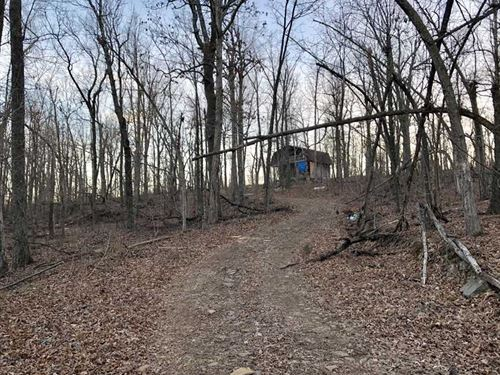 20 Acres & Remote Cabin in Sea : Marshall : Searcy County : Arkansas