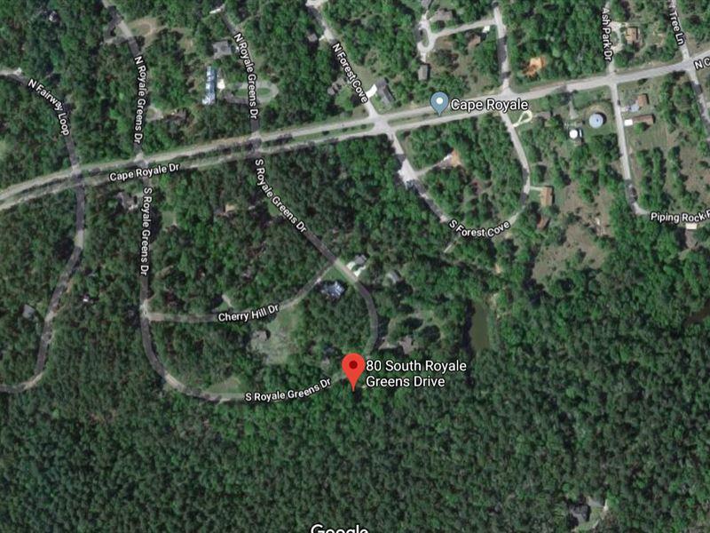 .21 Acres In Coldspring, TX : Coldspring : San Jacinto County : Texas