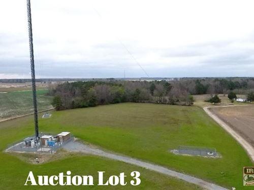 8.7+/- Acres On David Bright Road I : Faison : Duplin County : North Carolina