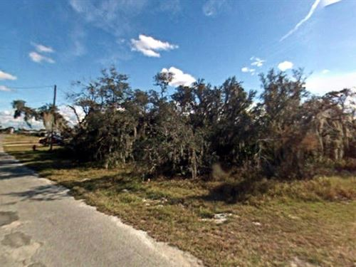 Polk County, Fl $20,000 Neg : Lake Wales : Polk County : Florida