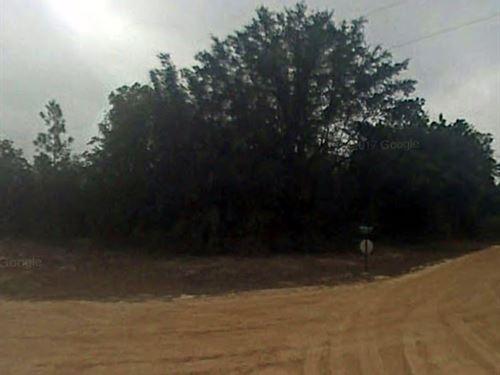 Jackson County, Fl $30,000 Neg : Marianna : Jackson County : Florida