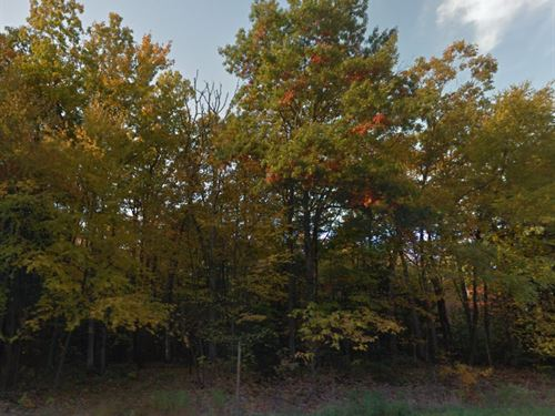 Luzerne County, Pa $20,000 Neg : White Haven : Luzerne County : Pennsylvania