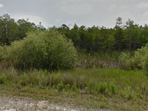 Collier County, Fl $15,000 Neg : Naples : Collier County : Florida