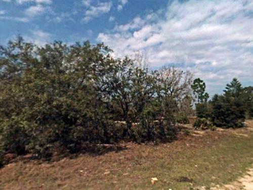 Citrus County, Fl $23,000 Neg : Dunnellon : Citrus County : Florida