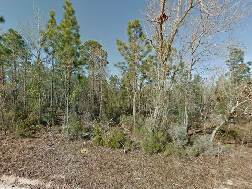 Putnam County, Fl $35,000 : Interlachen : Putnam County : Florida