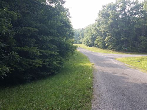 1.03 Ac In Cumberland Cove, Tn : Monterey : Cumberland County : Tennessee