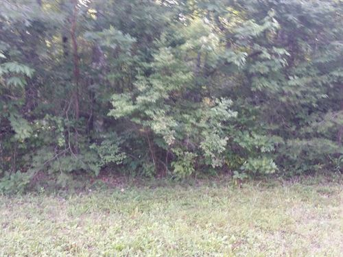 1.10 Ac Lot In Cumberland Cove, Tn : Monterey : Cumberland County : Tennessee