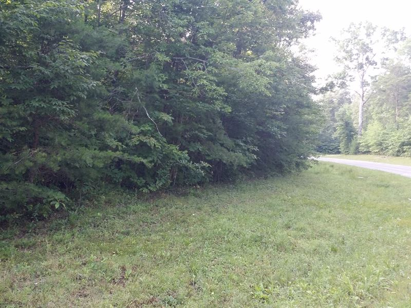 .94 Ac Lot In Cumberland Cove, Tn : Monterey : Cumberland County : Tennessee