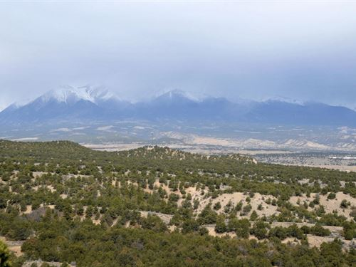 6163480 - Two Private, Heavily Tree : Salida : Chaffee County : Colorado