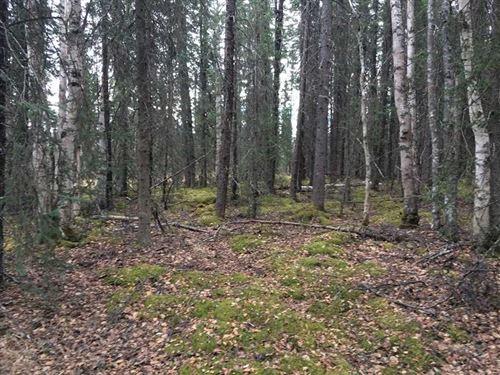 5.61 Acres of Recreational/Residen : Wasilla : Matanuska-Susitna Borough : Alaska