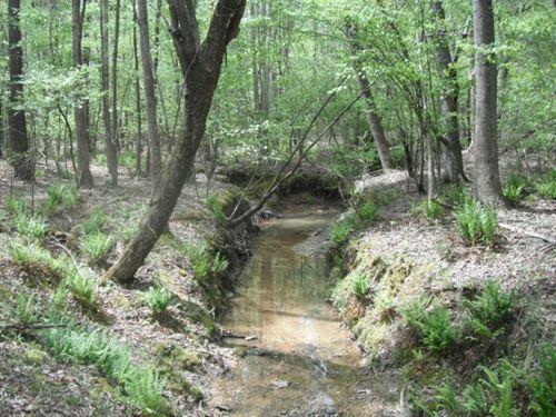 20 Acres - Lancaster County, Sc : Lancaster : South Carolina
