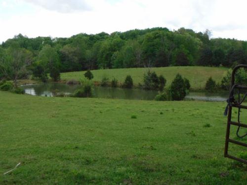 10.44 Ac W/Spring Fed Pond, Creek : Rickman : Cumberland County : Tennessee