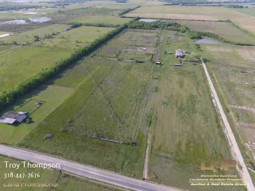 20 Acres Lacassine Jeff Davis : Lacassine : Jefferson Davis Parish : Louisiana