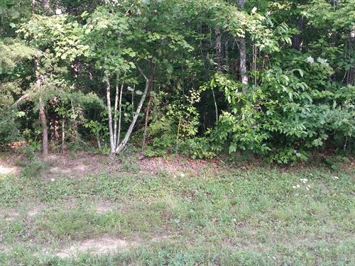 1.3Ac In Cumberland Cove, Tn : Monterey : Cumberland County : Tennessee