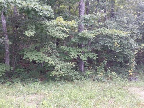 1.03Ac In Cumberland Cove, Tn : Monterey : Cumberland County : Tennessee