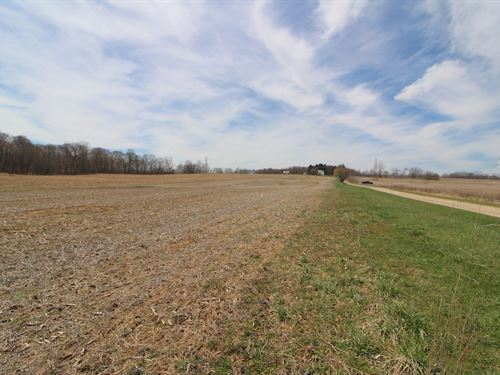 Taylor Rd, 6 Acres : Doylestown : Wayne County : Ohio