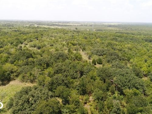 10 ac Near Scurry, Timber, Rolling : Scurry : Kaufman County : Texas