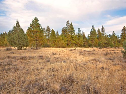 Stunning Peaceful Buildable Parcel : Chiloquin : Klamath County : Oregon