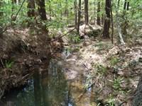 14 Acres - Fairfield County, Sc : Great Falls : Fairfield County : South Carolina