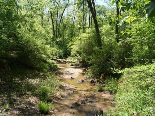 5.64 Acres - Fairfield County, Sc : Winnsboro : Fairfield County : South Carolina