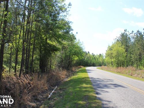 Black Creek 10 Acres : Summerville : Berkeley County : South Carolina