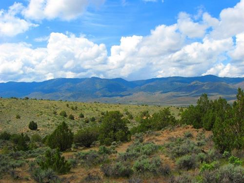 2.5 Acres In Humboldt River Ranchos : Ryndon : Elko County : Nevada