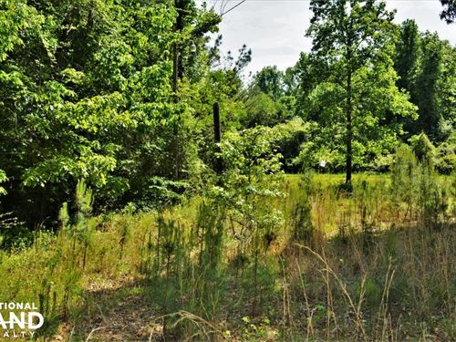 County Road 35 Mobile Home Lot : Fayette : Alabama